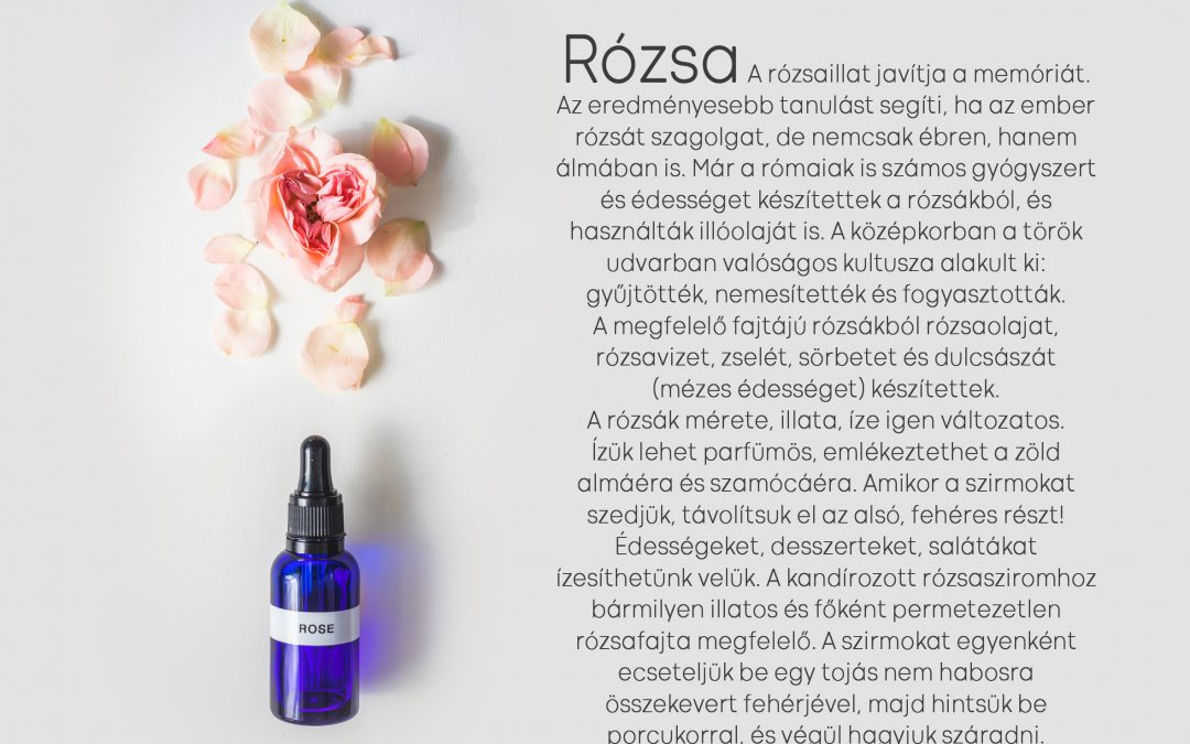 Parfüm Iskola 4. szint Daniel Pescio-val: Rózsa